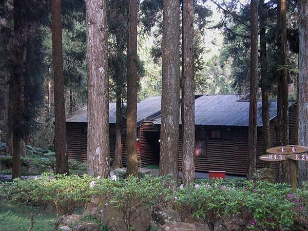 或隱入林中茅屋,探訪遁世奇人