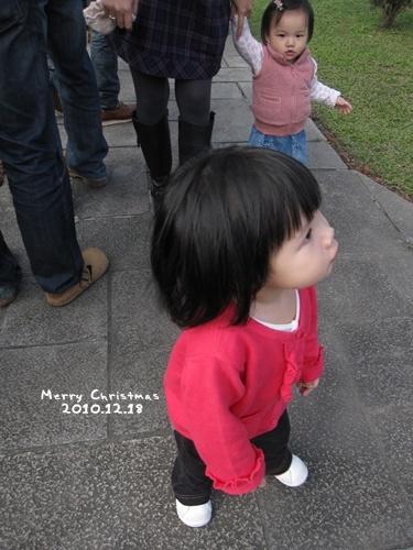 有人要抱Gigi,但是小姐她立馬閃開,結果是Lulu走去讓那陌生阿姨抱,真是好笑...