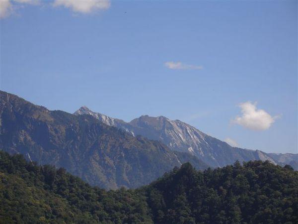 碧綠神木眺望中央尖山