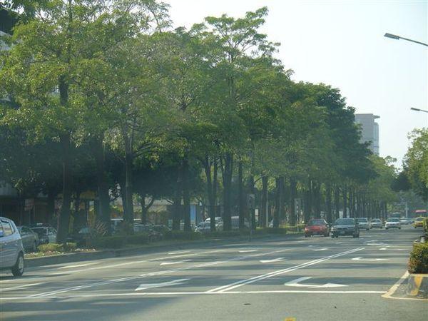 台中港路二段,林蔭大道
