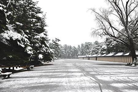 京都御苑雪化粧
