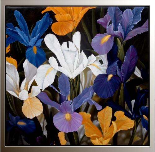 Medad, Iris 100x100.jpg
