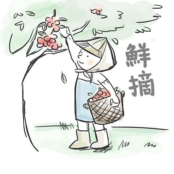 01摘荔枝