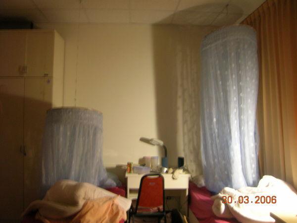 蚊帳修復前修復後對照圖