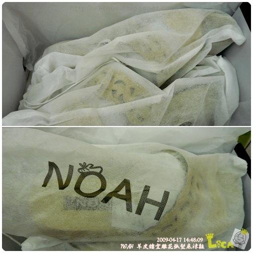 NOAH-02A