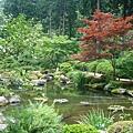 三室戶寺- 回遊式池泉庭園