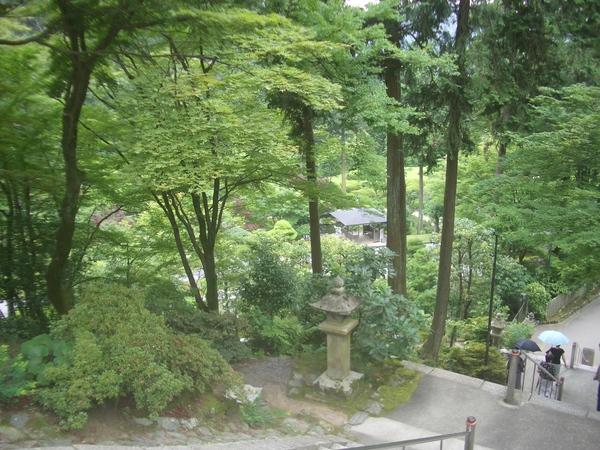 三室戶寺- 通往本堂的石階