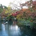 永觀堂---放生池