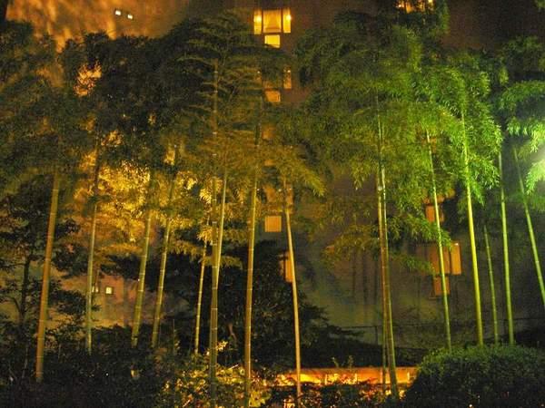 寶池王子飯店-竹