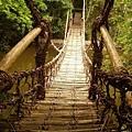 四國村---仿祖谷籐橋