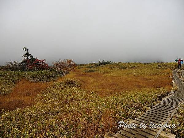 CIMG0165_彌陀之原遊步道.jpg