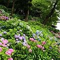 鎌倉-長谷觀音寺3.jpg