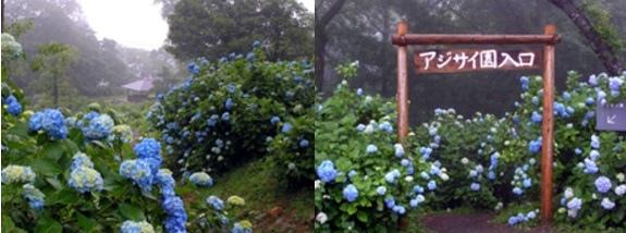 京都-舞鶴自然文化園.jpg