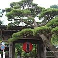 鎌倉-長谷觀音寺1.jpg