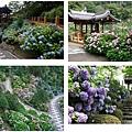 京都-善峰寺.jpg