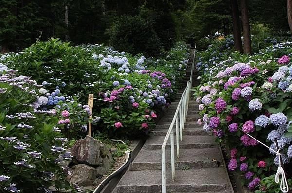岡山-吉備津神社2.jpg