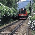 箱根-登山鐵道1.jpg