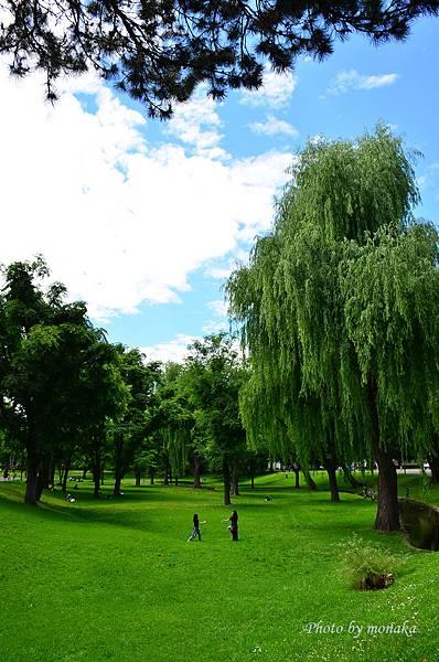 北海道大學--美麗的校園綠地