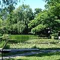 北海道大學--大野池