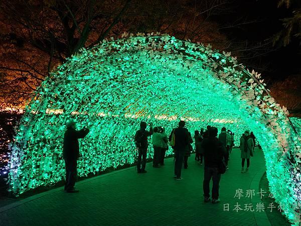名花之里_出口櫻花隧道