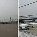 名古屋機場看飛機.jpg