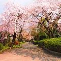 仙台_榴岡公園.jpg