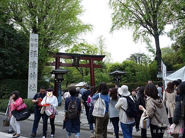 根津神社杜鵑花祭