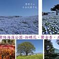 國營常陸海濱公園_封面圖.jpg