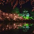 高田城夜櫻
