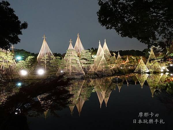 白鳥庭園_雪吊夜間點燈