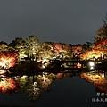 白鳥庭園_夜楓