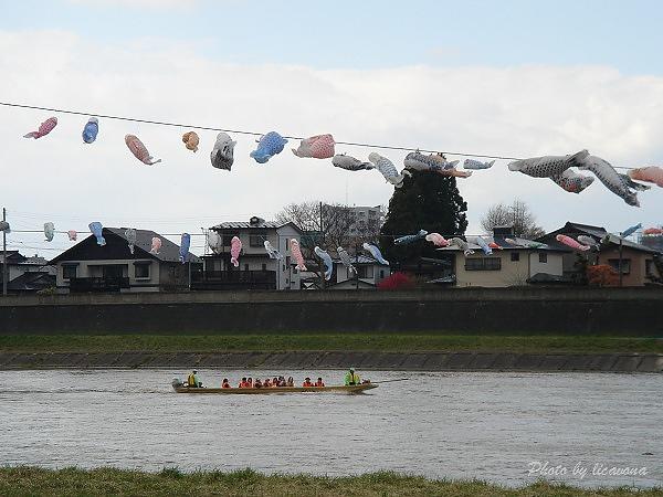 北上展勝地~鯉魚旗