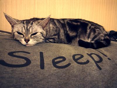 sleep!