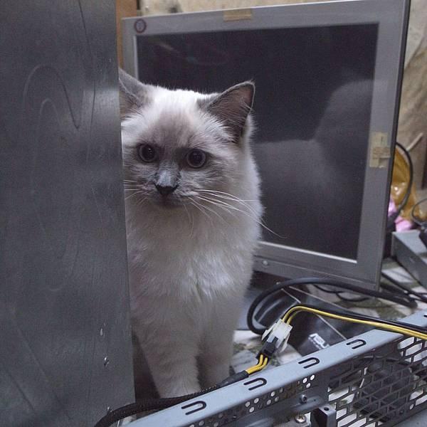 電腦主機內部世界