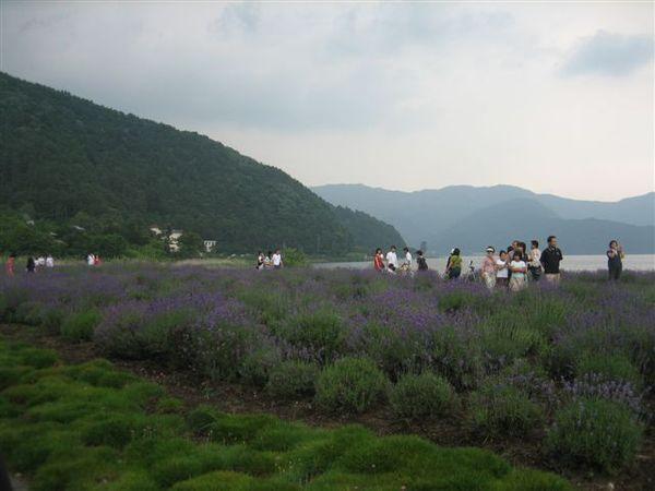 103.大石公園.JPG