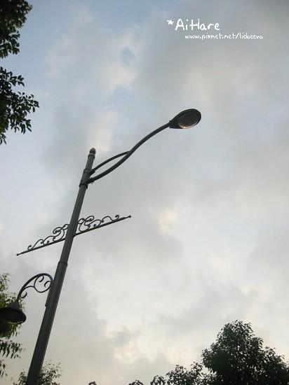 200808-057.jpg