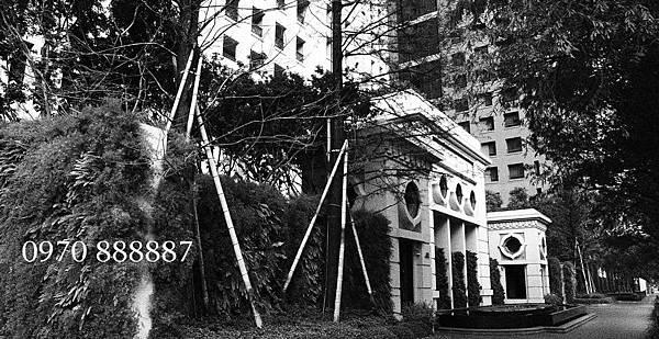 聯聚建設-聯聚方庭-台中七期-方庭大廈13
