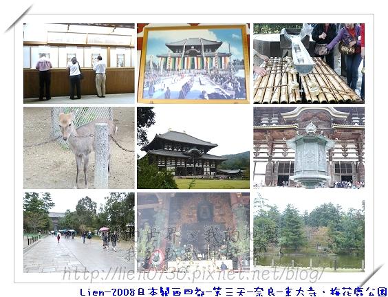 第三天-奈良-東大寺、梅花鹿公園