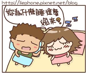 20081119_01.jpg