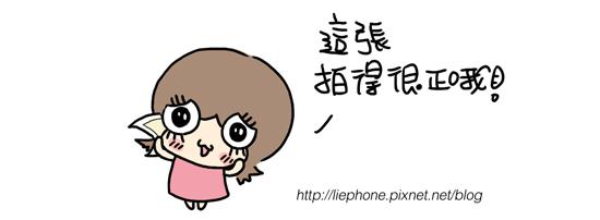 20100419_03.jpg