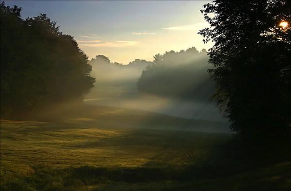 mist056[1].jpg