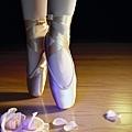 芭蕾舞腳1