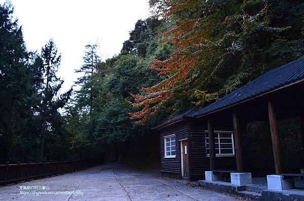 武陵&福壽山 798_副本.jpg