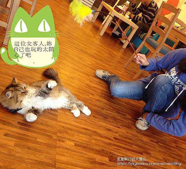 貓老闆 164_副本.jpg