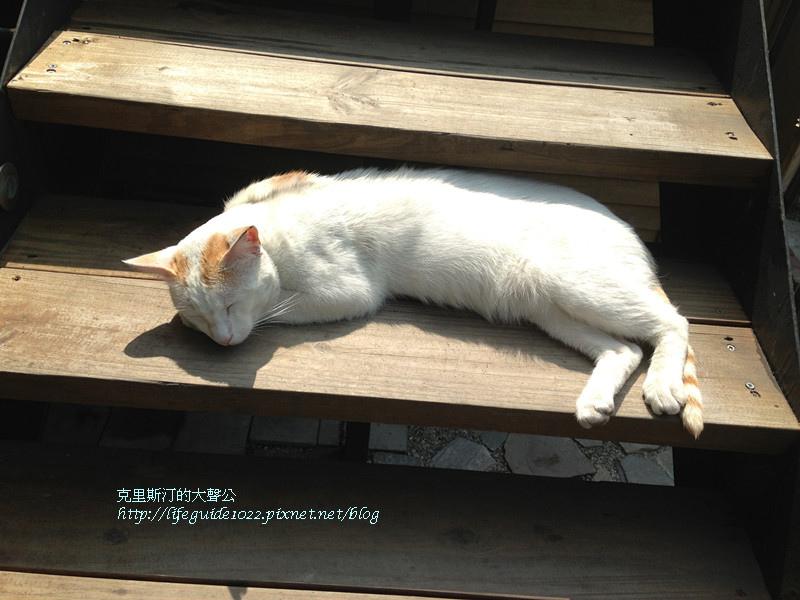 田樂 097_副本.jpg