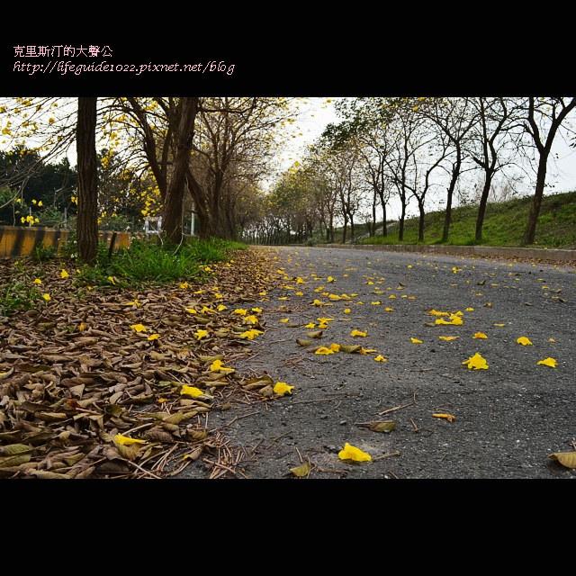 六興宮 137_副本.jpg