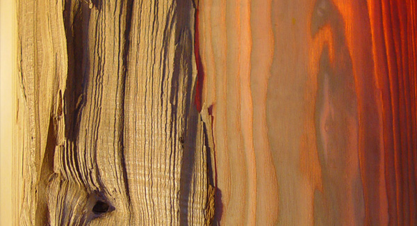 transcending-ash-wood-lamp-3.jpg