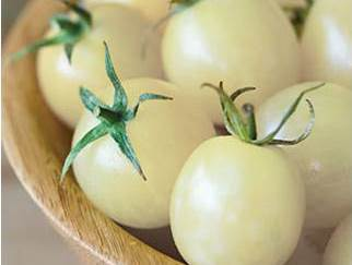 湖北黄冈进口特色水果白番茄