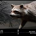 LV1-台中科博館-標本系列 /Edward