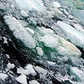 東西伯利亞海表面漂浮的冰塊